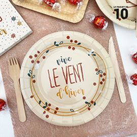 10 Assiettes carton 22 cm Petits flocons d'hiver