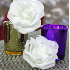 Roses mousse blanches 8 cm