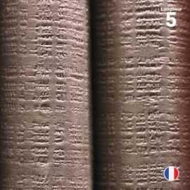 Nappe papier tendance lin chocolat 5 mètres
