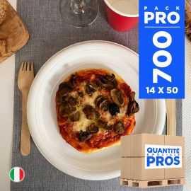 700 Assiettes chaleur plates 21 cm. Recyclables - Réutilisables.