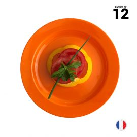 12 Assiettes rondes orange 19 cm Lavables - Réutilisables
