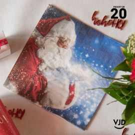 20 Serviettes papier Hohoho 16,5 X 16,5 cm Père Noël.