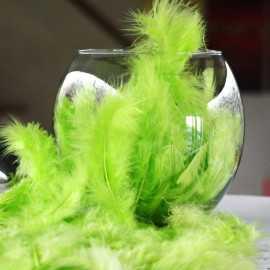 Plumes de décoration vertes