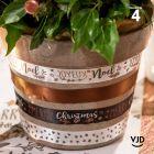 4 rubans cadeaux de fête. Chocolat, or, étoilé présentoir sapin