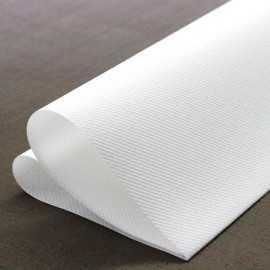 Pack 100 serviettes intissé blanches 40cm x 40 cm