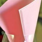 Serviettes en papier Soft rose pastel 38 x 38