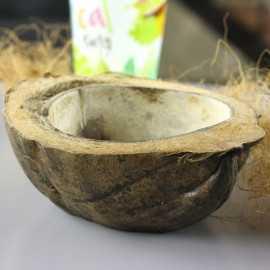 Coupelle demi noix de coco