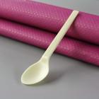 Cuillère dessert PLA Bio 12 cm