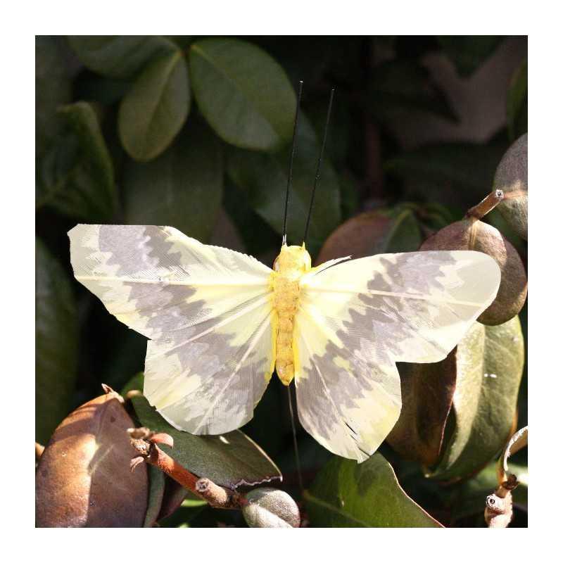 Papillon 10 Discount Papillon de dé...