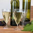 Verres à vin en plastique design 15-18 cl