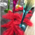 Plumes de décoration Rouges