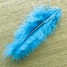 Plumes de décoration Turquoise