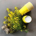 500 Gobelets jaunes 21cl Carton recyclable