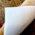 200 serviettes papier blanc 33 x 33cm 2 plis