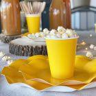 Pack jaune 100% Bio 40 assiettes + 20 gobelets biodégradables et compostables