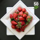 Assiette biodégradable carrée 16 cm. Par 50