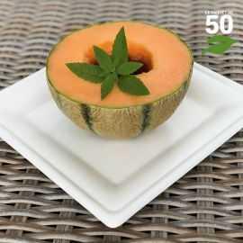 Assiette biodégradable carrée 20 cm. Par 50.